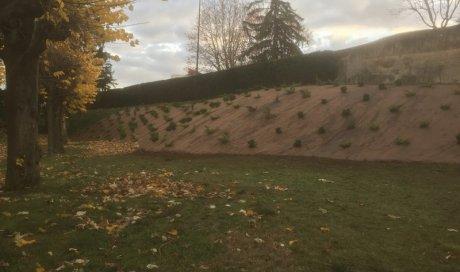 Paysagiste Clermont Ferrand Pour Creation D Espaces Verts Artisan