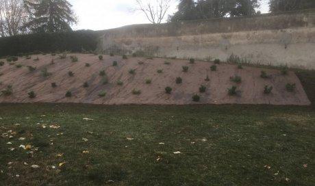 Contrat Annuel Entretien Jardin Chamalieres Artisan Paysagiste